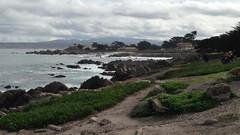 IMG_1218 (mudsharkalex) Tags: california pacificgrove pacificgroveca