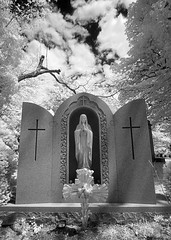 IMG_2729 (Excaliber2013) Tags: 20d ir canoneos20d infrared falsecolor sleepyhollowcemetery lifepixel