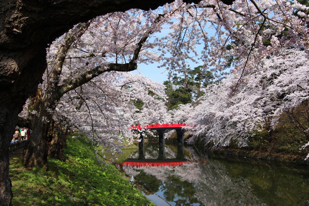 Парк Хиросаки