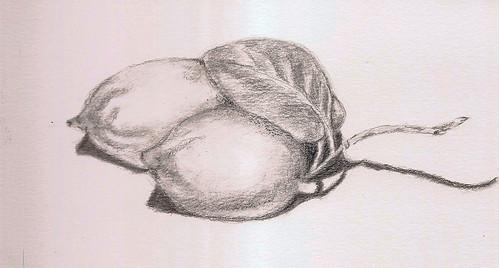 limones en lapis