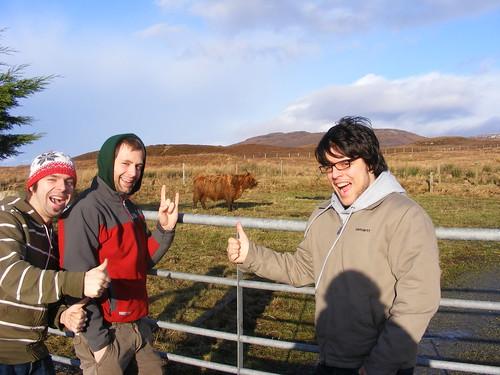 Mis amigos y yo con una vaca de las Highland