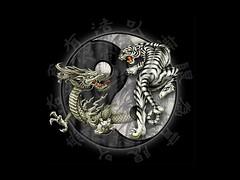 Dragon tiger ying yang (?who?) Tags: white cool dragon tiger ying yang whitetiger