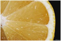yellow (Magda'70) Tags: macro yellow closeup lemon nikon d200 2008 aplusphoto zymon goldstaraward