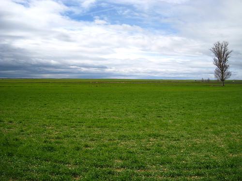 Tierra de campos palentina 2
