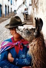 ¡¡¡quiero un sombrero!!! (Pierre♪ à ♪VanCouver) Tags: kiss cusco alpaca peruvianimages peru andes llama lama sofarsocute qosqo pérou