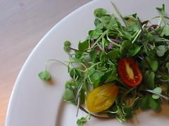 Vegetarian BLT 4