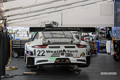 Nice weather (Arturo Hurtado) Tags: porshe weathertech continentaltire autoracing imsa roadamerica wisconsin wcec whips wheels wang wide wing white elkheart racing racecar racetrack race tudorunitedsportscarchampionship tudor usa automotion illest outdoor power performance annual american auto slammed stancewi speedway show fitted fitment fresh gt gtlm gtd grip lifestyle livery lowered carshow cars clean vehicles vpracing neckbreakers baw bigasswings midwestmodified midwest scca canon