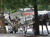 All In A Day's Work (linniem) Tags: horse buenosaires carriage jardinjaponais sleepingonthejob 5photosaday notakers tohire