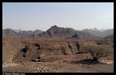 Gravel plains.....of desert habitat (Naseer Ommer) Tags: mountains rock rockymountains oman unitedarabemirates explo