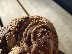 moisissure concentrique (vincentLOMO) Tags: macro fruit rotten poire moisissure circulaire amélienothomb f31fd