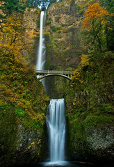 Fall at Multnomah Falls (SheldonBranford (RichGreenePhotography.com)) Tags: autumn fall leaves oregon waterfall big thumbsup momma multnomahfalls gettyimages columbiarivergorge 0510 larchmountain bigmomma bensonbridge d80 specnature nikkonstunninggallery columbiariverscenichighway challengeyouwinner flickrchallengegroup flickrchallengewinner megashot 15challengeswinner theunforgettablepictures theperfectphotographer friendlychallenges tup2 mimsoctober mslandscape richgreenephotography