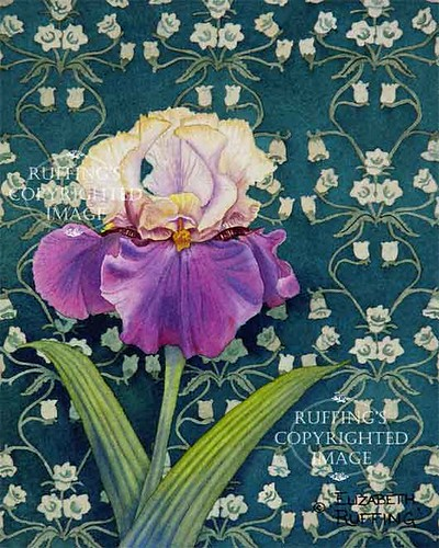 """""""Tan and Purple Iris on Green"""" ER28 by Elizabeth Ruffing Floral Giclee Print"""