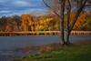Homage to Douglas Sirk (Madison Guy) Tags: lakewingra vilaspark douglassirk technicolor allthatheavenallows madison wisconsin wi nikond40x nikon1855mm lks