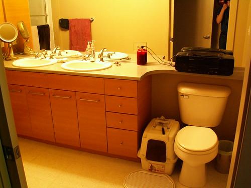 The World Needs A Stronger Blog Deli Cats Reprise - Litter box in bathroom for bathroom decor ideas
