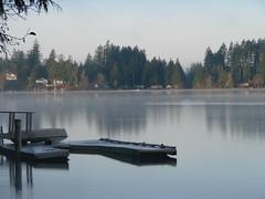 Dinah Loves Mason County's Lakes