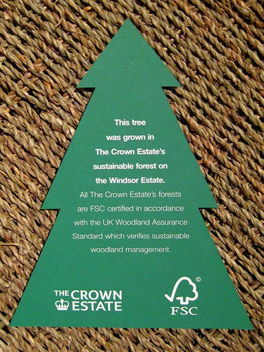 FSC Christmas Trees