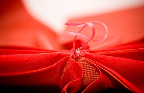 Macro Morning - Red Ribbon