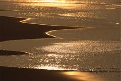 Oro parece, plata no es... (Apetitu) Tags: color digital mar playa dorado oro brillos ixone canon400d orillera zergatikez tamrom18200