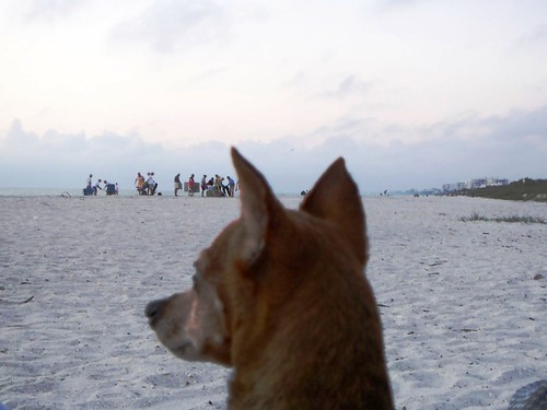 People Watching Bonita Beach