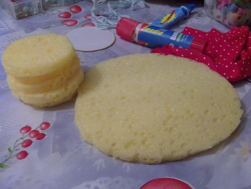 circulo esponja grande