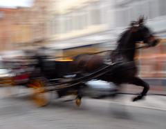 coach in Bruges, Belgium (Werner Schnell (1.stream)) Tags: horse coach nikon carriage belgium brugge bruges brujas brugges werner ws cubism schnell brügge justimagine 35faves mywinners abigfave platinumphoto goldstaraward wernerschnell