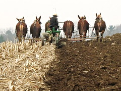The Good Earth (L-T-L) Tags: earth farm amish lancaster fc plowing
