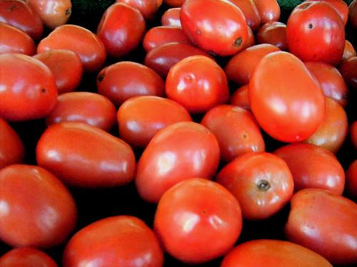 Abundance of Roma Tomatoes