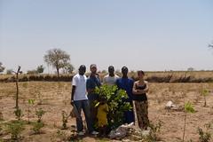 Senegal scene