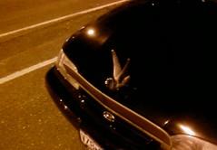 Nice swan hood ornament on your Hyundai, douche