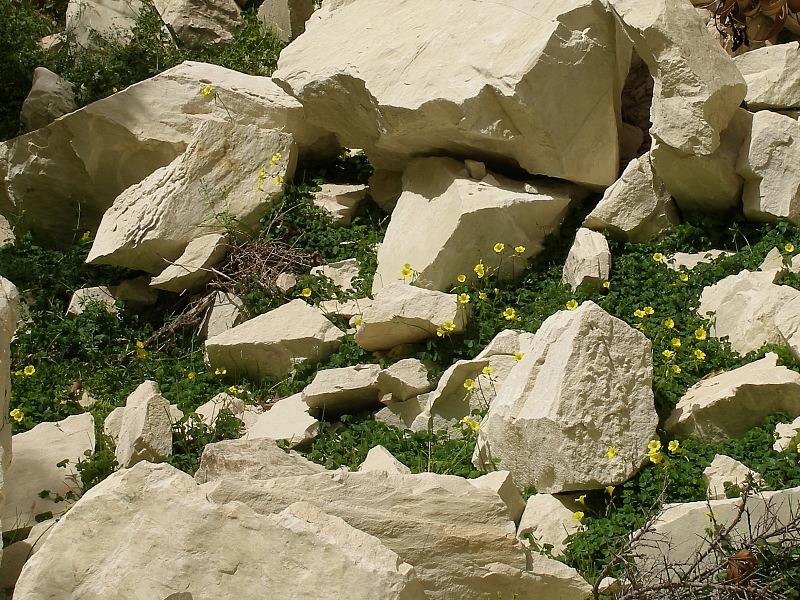 Avakas rocks