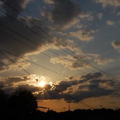 124/365 - The Sun Smells Too Loud (Johanna Bocher) Tags: light sunset shadow sky sun sunlight clouds nikon shine dusk may powerlines 365 setting mogwai sunbeam d40 project365 vogongraduate thesunsmellstooloud 365x2009 04052009