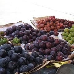 fruit (pandazhang) Tags: food fruit sweet plum apricot sichuan grape