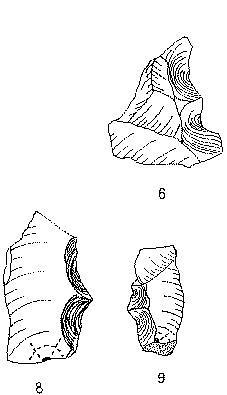 denticulados