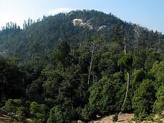 Mt Misen Summit