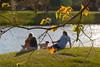 Winter Sun (olvwu | 莫方) Tags: park light usa dog lake water grass yellow ga river georgia relax leaf couple shine bokeh lakeside savannah yellowleaf jungpangwu oliverwu oliverjpwu olvwu lakemayor lakemayorpark jungpang 莫方 吳榮邦