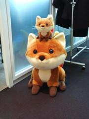 w foxkeh