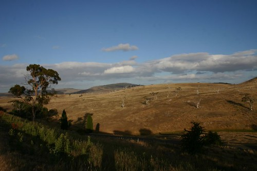Central Tasmanian Farmland...