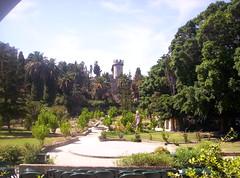Il Parco (Grabby Walls) Tags: world park travel parco tower castle island torre places greece grecia castello viaggi rodos rhodes viaggio rodi isola viaggiare grabbywalls