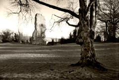 """2008_366024 - Bramber Castle Sepia • <a style=""""font-size:0.8em;"""" href=""""http://www.flickr.com/photos/84668659@N00/2216952012/"""" target=""""_blank"""">View on Flickr</a>"""