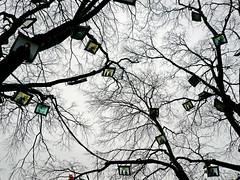 L'Arbre à Palabres #2 (an untrained eye) Tags: colour tree topf25 television topv111 switzerland topv555 topv333 500v20f geneva topv1111 topv999 screen topv222 blogged topv777 publicart topv11111 conceptualart arbresetlumières placedeneuve anuntrainedeye larbreàpalabres paulinejulier