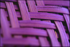 Violet Abstraction! ({ :: alive :: }  ) Tags: abstract lines canon focus traditional violet colored abstraction alive diagonals