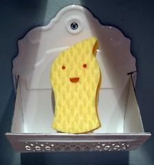 Japanese sponge