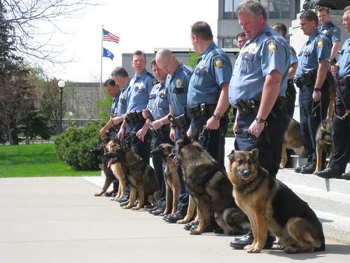 Detroit Police K9 Unit Gets Donation Of Five New Bullet Resistant ...