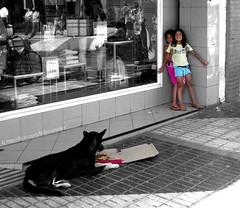 Festín a la Romana (Felipe Smides) Tags: chile friends dog amigos art dogs animal animals arte s niños pizza perro perros animales niñas felipe rancagua artisticexpression ñami instantfave quiltro mywinners abigfave aplusphoto beatifulcapture artlegacy smides fotografiasmides funfanphotos felipesmides