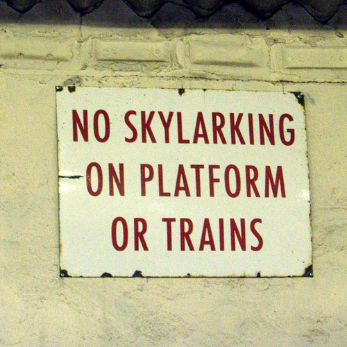 No Skylarking