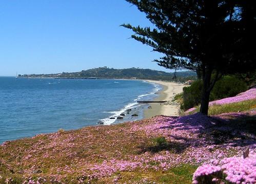 Santa Barbara Shoreline