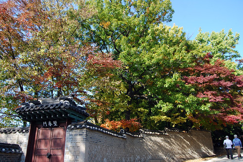 Walking Path, Changdeokgung Palace