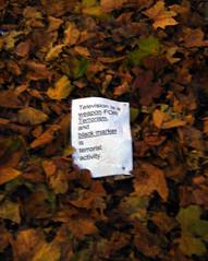 Message in the leaves, Harringay (Fin Fahey) Tags: city uk greatbritain autumn england urban london fall leaves television geotagged unitedkingdom britain autumnleaves terrorism n8 harringay haringey blackmarket northlondon duckettscommon