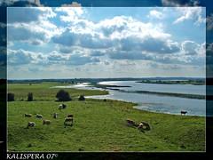 Clonmacnoise  -Shannon River- IRELAND LANDSCAPE (Kalispera2007) Tags: ireland panorama river landscape clonmacnoise country campagna irlanda midlands