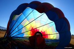 Collapsing High Lee Like Lee (Satxvike) Tags: texas elpaso hotairballoon coolbeans satxvike henrydelgado ~wevegotthepower~ westsidelaunch highleelikelee billleepilot whatawaytospendasundaymorning virginballoonist